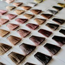 髪の明るさのレベル